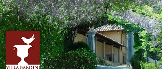 Glicine in fiore al Giardino Bardini