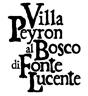 logo_peyron_intro